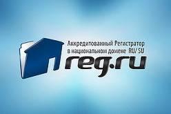 REG.RU стал лидером среди российских доменных регистраторов и хостинг-провайдеров в 2013 году
