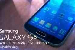 Samsung Galaxy S5 — что бы Вы хотели увидеть в 2014 году? (видео)