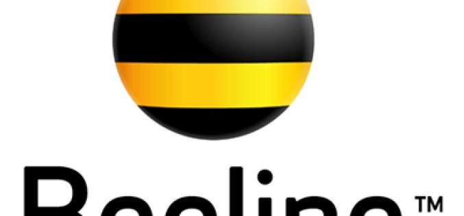 SMS-пакеты Beeline: все локальные сообщения по единой низкой цене