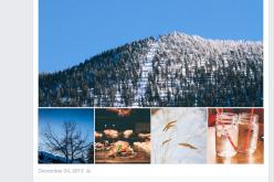 Facebook: «социальный поиск» научился учитывать посты, комментарии к ним и подписи к фотографиям