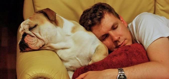 9 дьявольски умных приложений, которые помогут Вам рано вставать по утрам